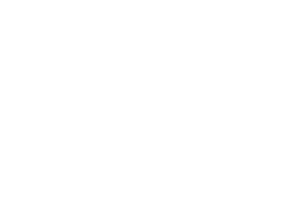 nucleo-consulting